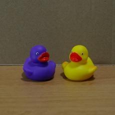Ducklings Mugshot